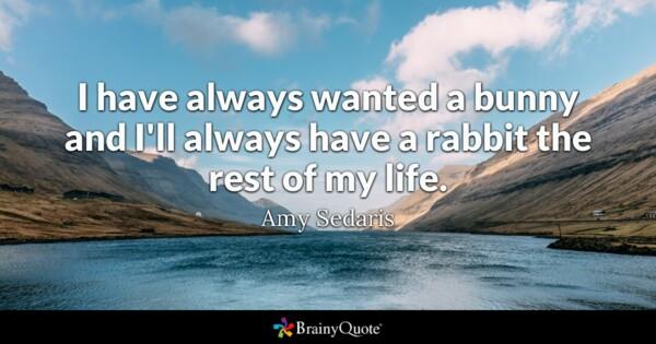 Amy Sedaris Quotes Twitter thumbnail