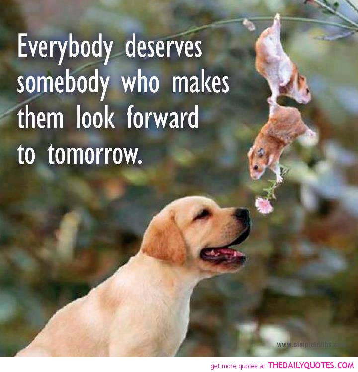 Animal Beauty Quotes Twitter thumbnail