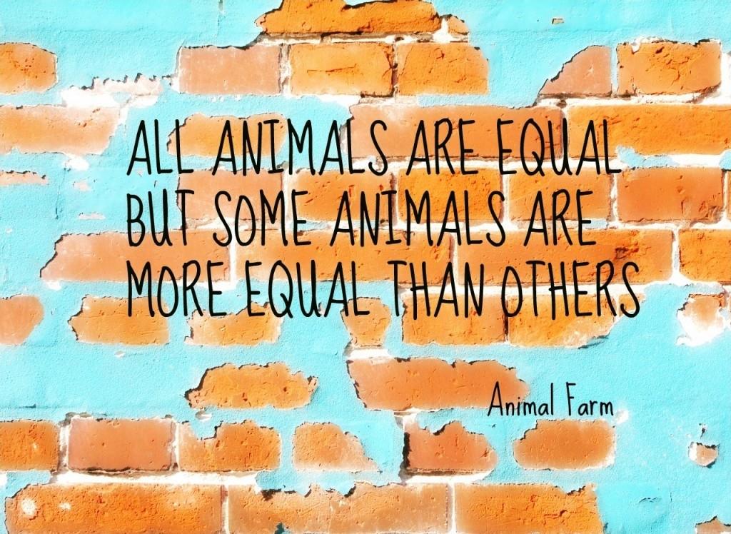 Animal Farm Sayings Tumblr thumbnail
