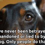 Animal Trust Quotes Twitter