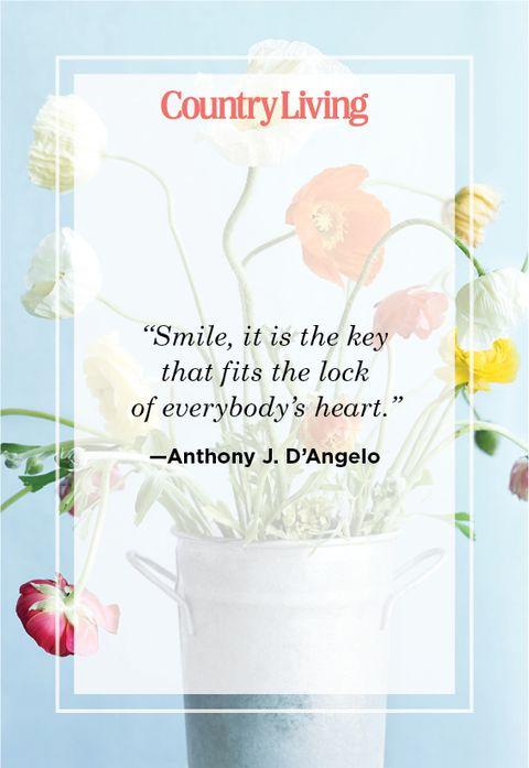 Beautiful Lines On Smile thumbnail