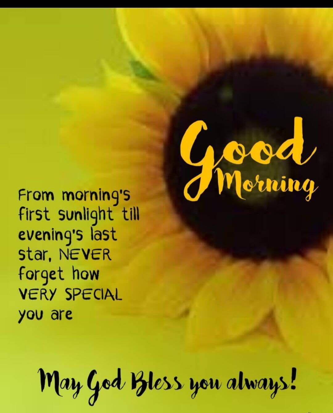 Best Good Morning Wishes Pinterest thumbnail