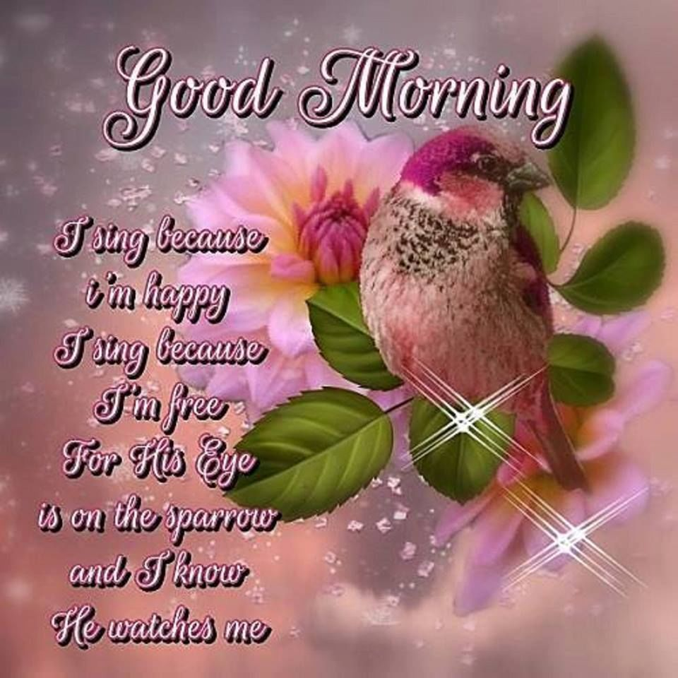 Biblical Good Morning Messages Pinterest thumbnail