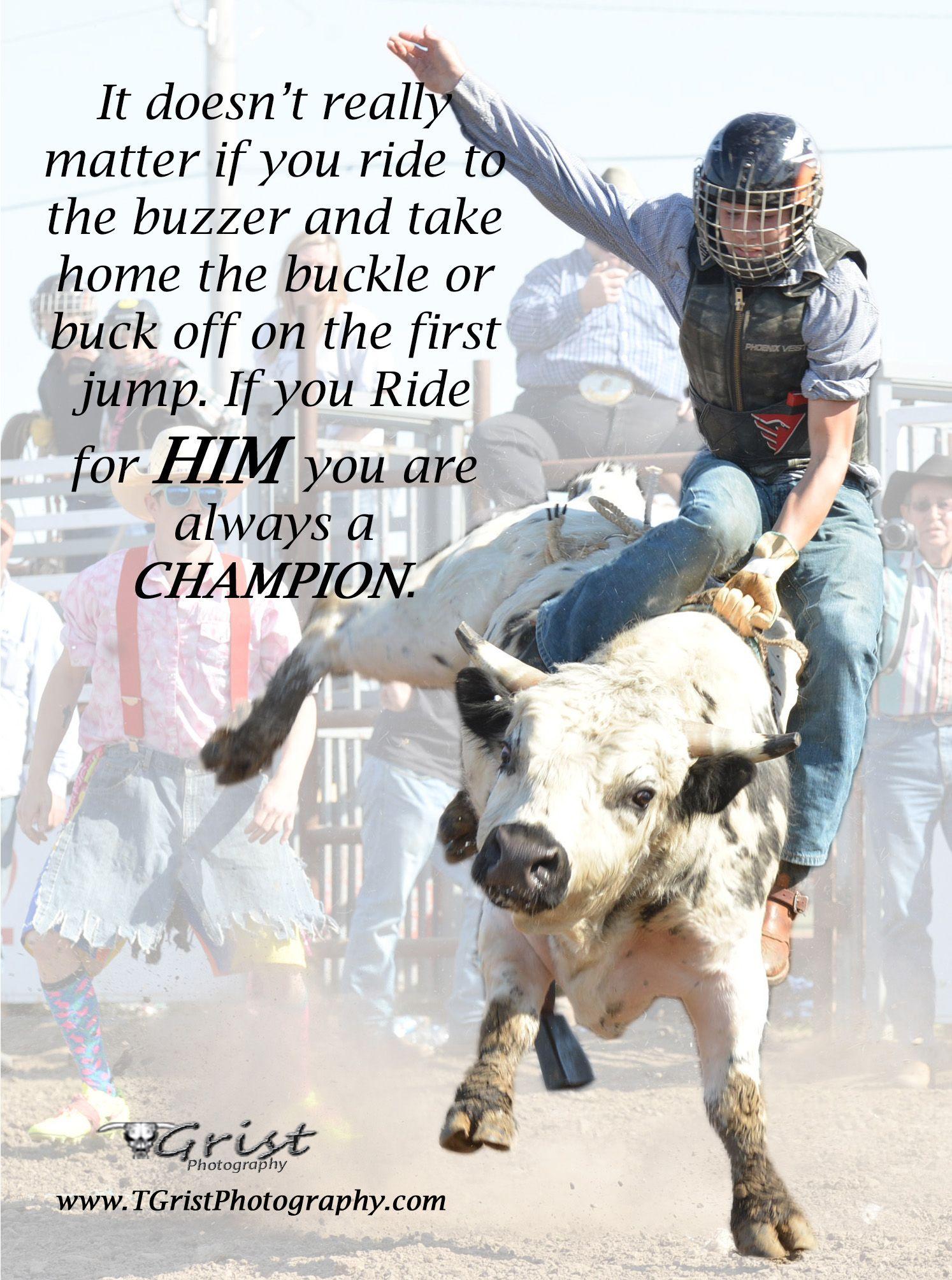 Bull Riding Quotes thumbnail