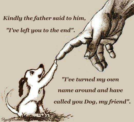 Dog And God Quotes Twitter thumbnail