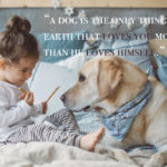 Dog Owner Quotes Twitter