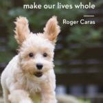 Dog Picture Quotes Tumblr
