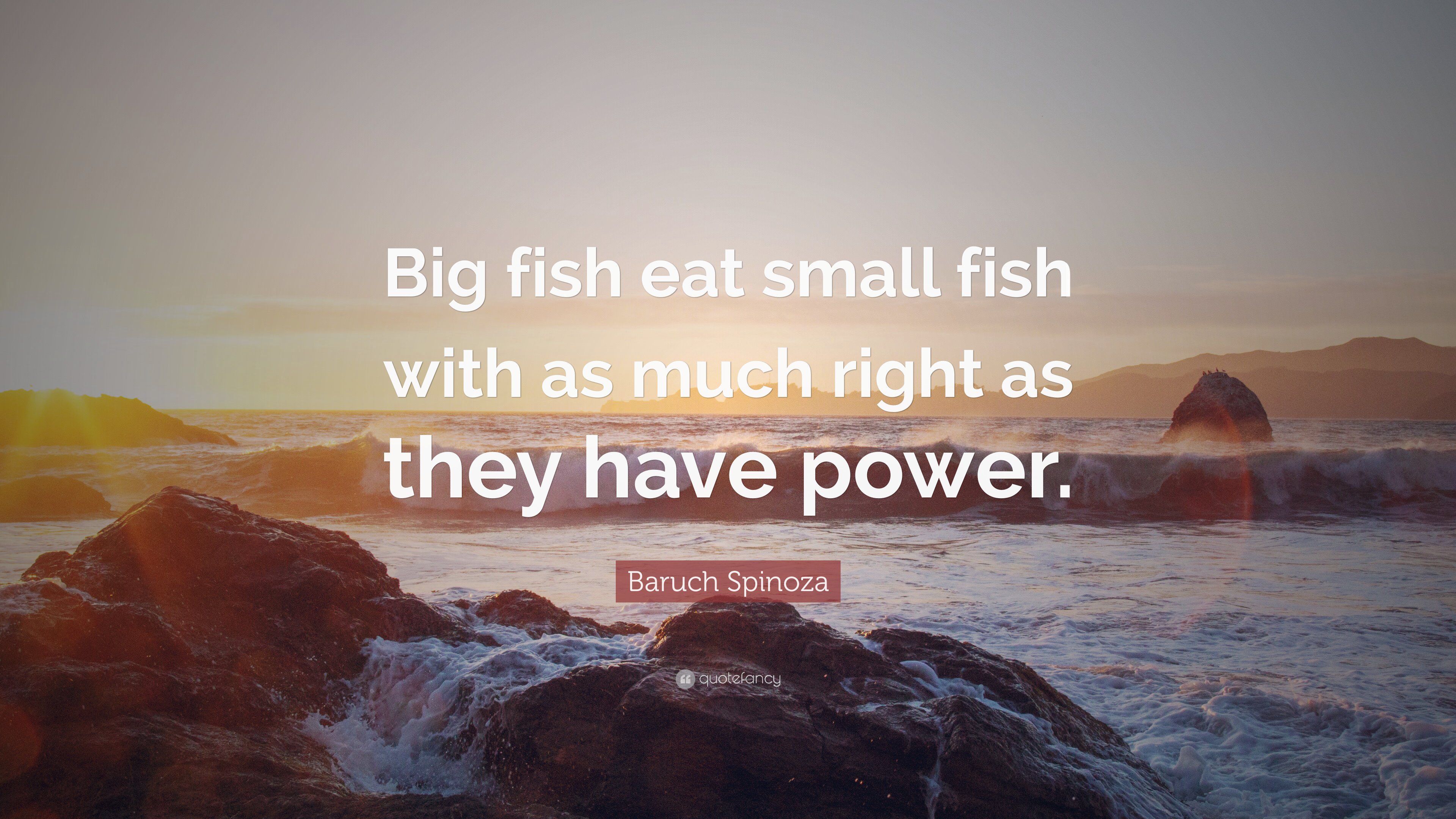 Eating Fish Quotes Pinterest thumbnail