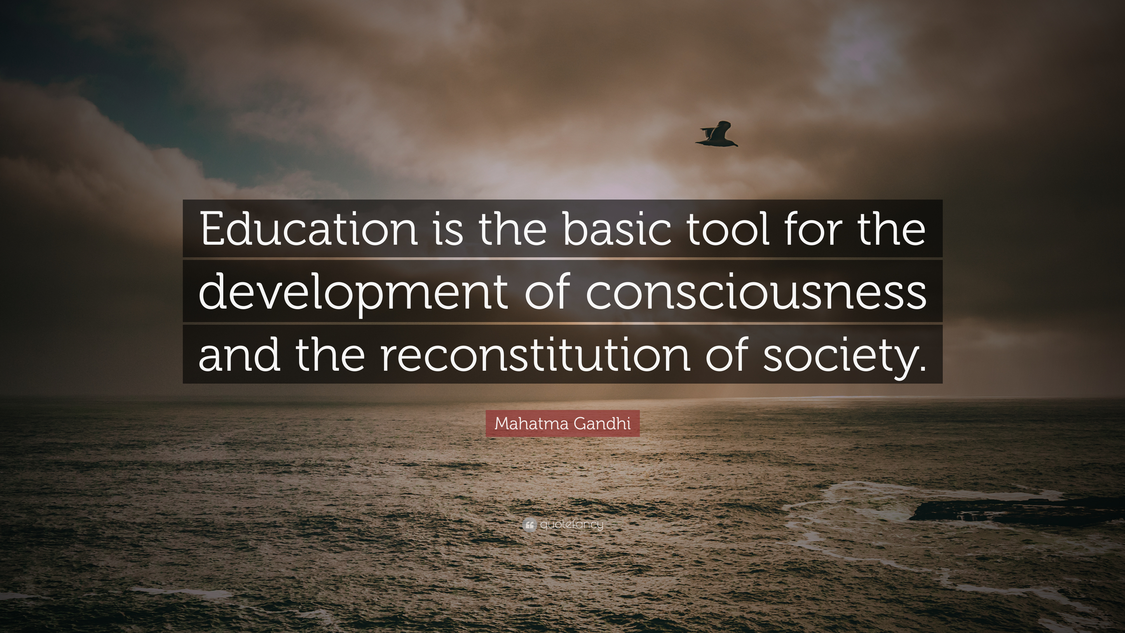 Education And Society Quotes Tumblr thumbnail