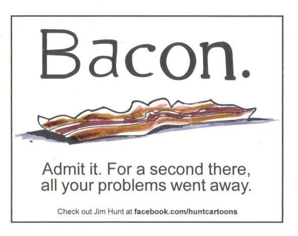 Funny Bacon Quotes Tumblr thumbnail