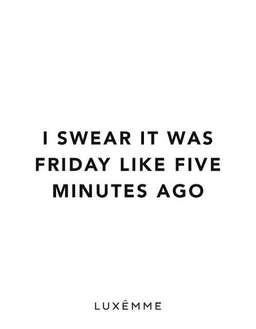 Funny Monday Posts Twitter thumbnail