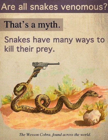 Funny Snake Sayings Facebook thumbnail