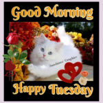 Good Morning Happy Tuesday Quotes Facebook