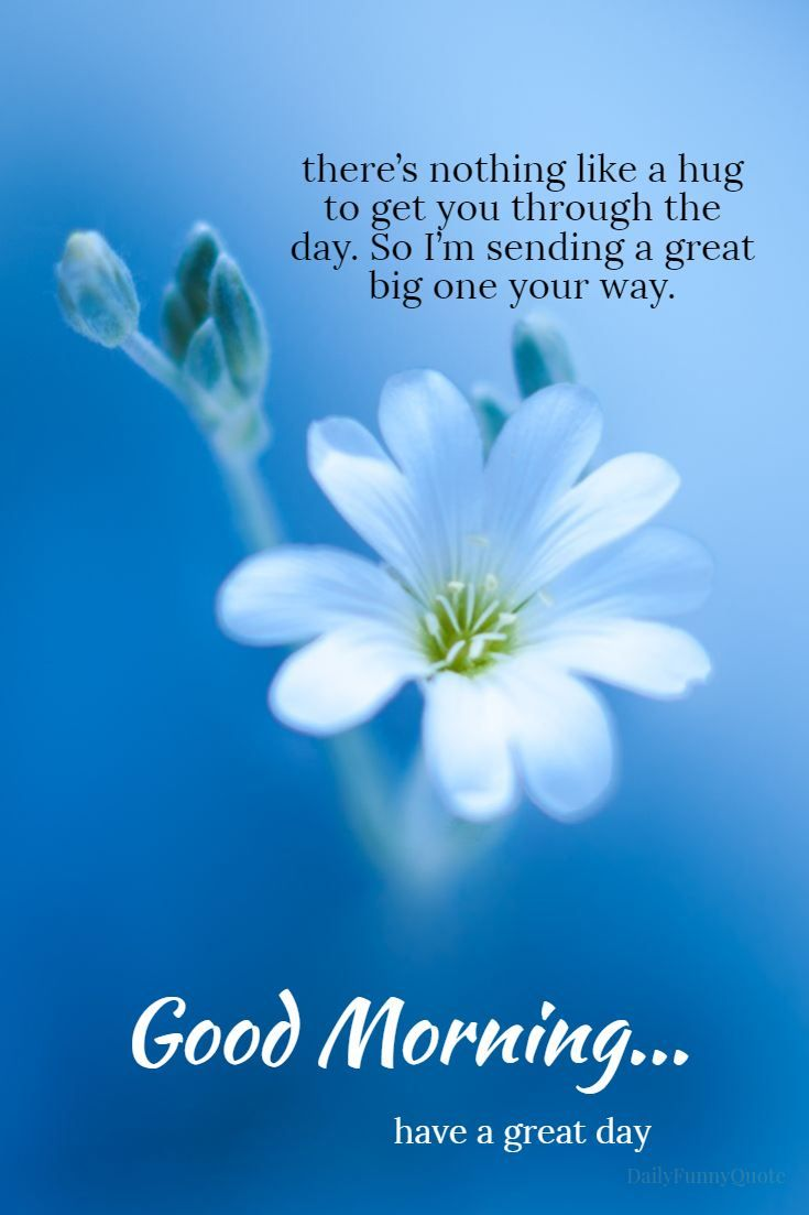 Good Morning Images With Beautiful Quotes Pinterest thumbnail