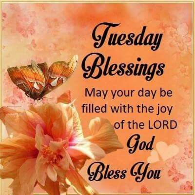 Good Morning Tuesday Blessing Quotes Pinterest thumbnail