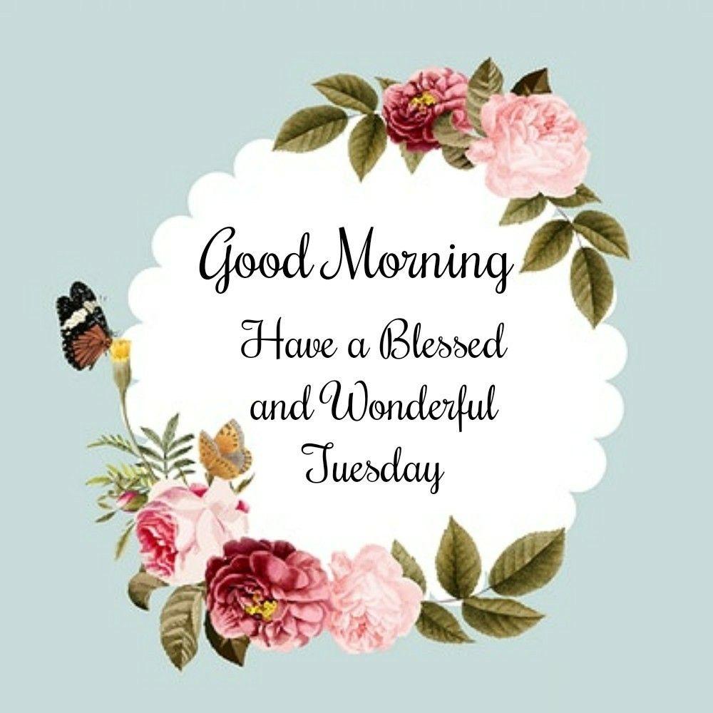 Good Morning Tuesday Wishes thumbnail