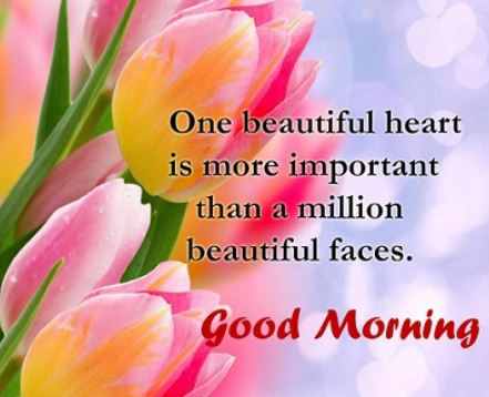 Good Morning Wishes With Beautiful Flowers Facebook thumbnail
