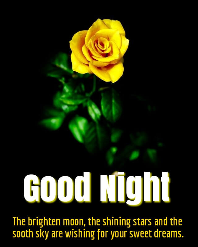 Good Night Flower Quotes Twitter thumbnail