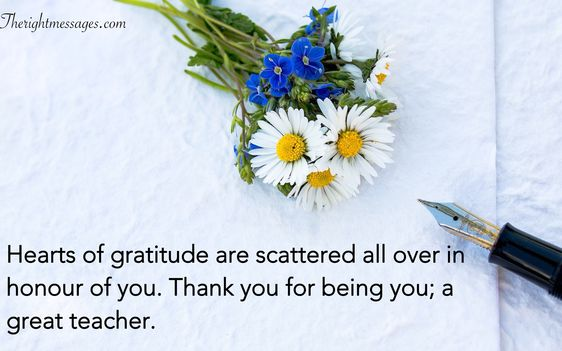 Grad Thank You Cards Sayings thumbnail