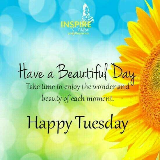 Happy Tuesday Quotes Twitter thumbnail