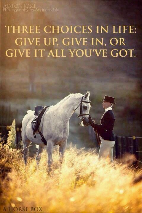 Horse Wisdom Quotes Facebook thumbnail