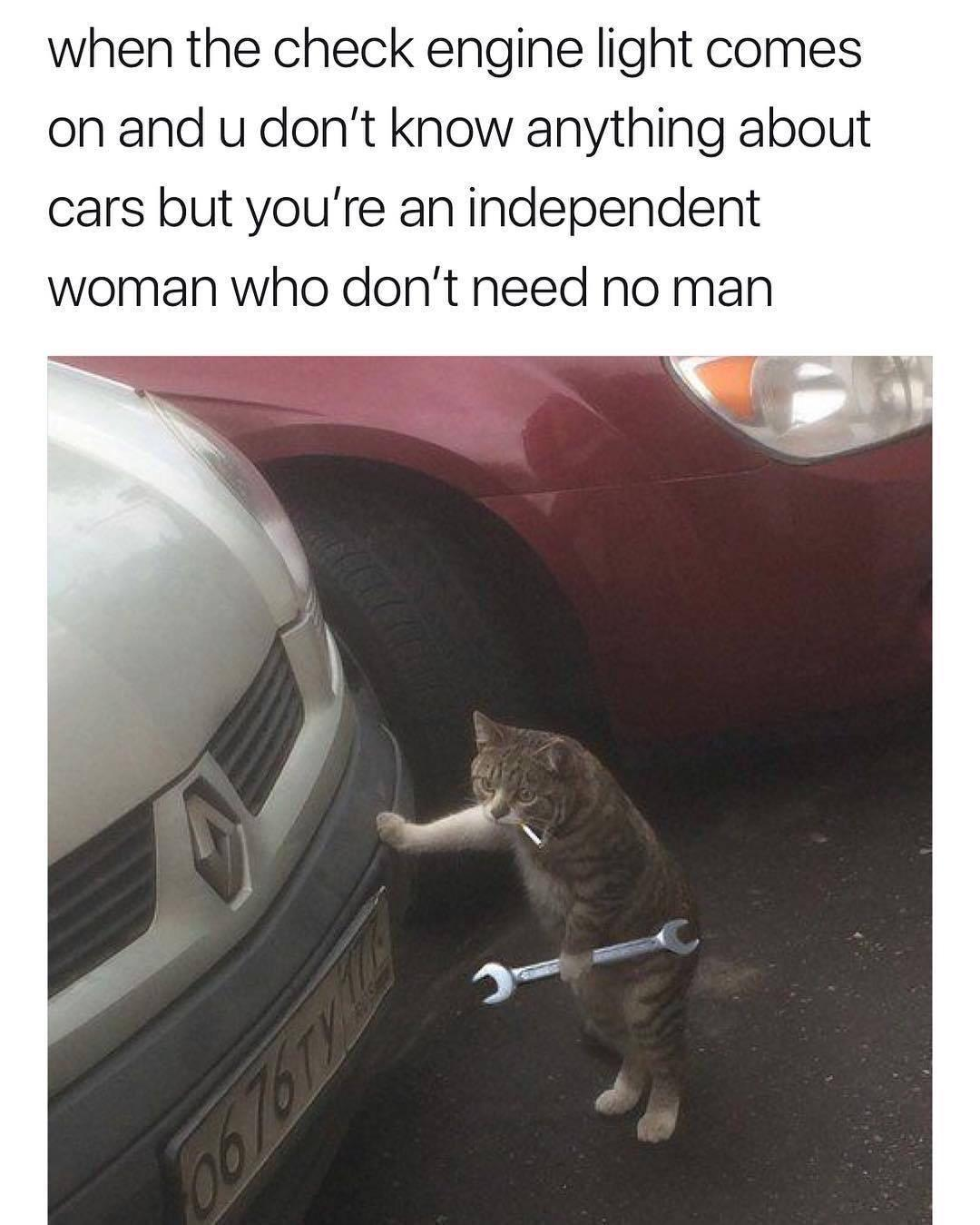 International Womens Day Funny Facebook thumbnail