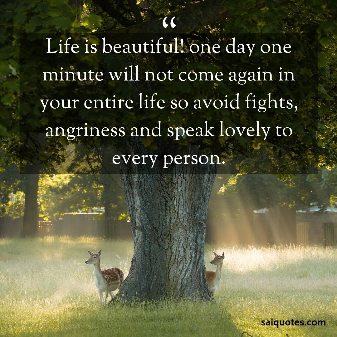 Life Is Beautiful With You Quotes Pinterest thumbnail
