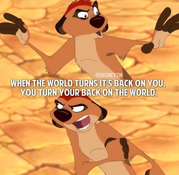 Lion King Quotes Funny Pinterest thumbnail