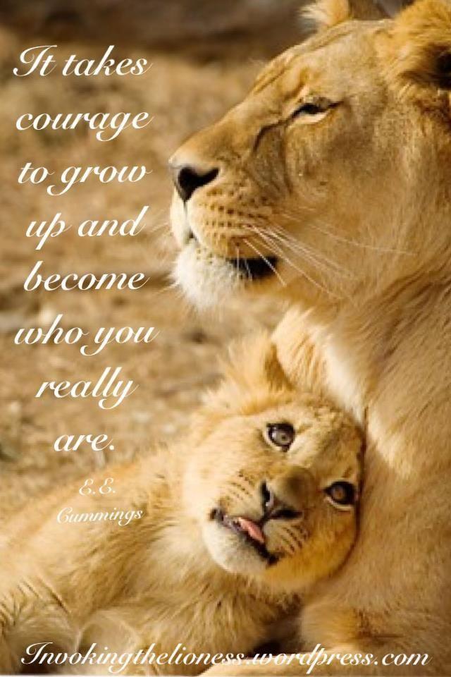 Lion Lioness Quotes thumbnail