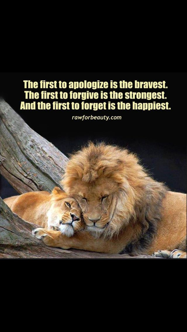 Lion Lioness Quotes Pinterest thumbnail