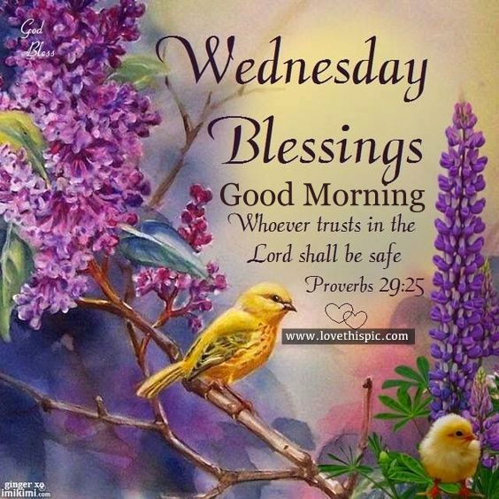 Lovethispic Wednesday Blessings Facebook thumbnail