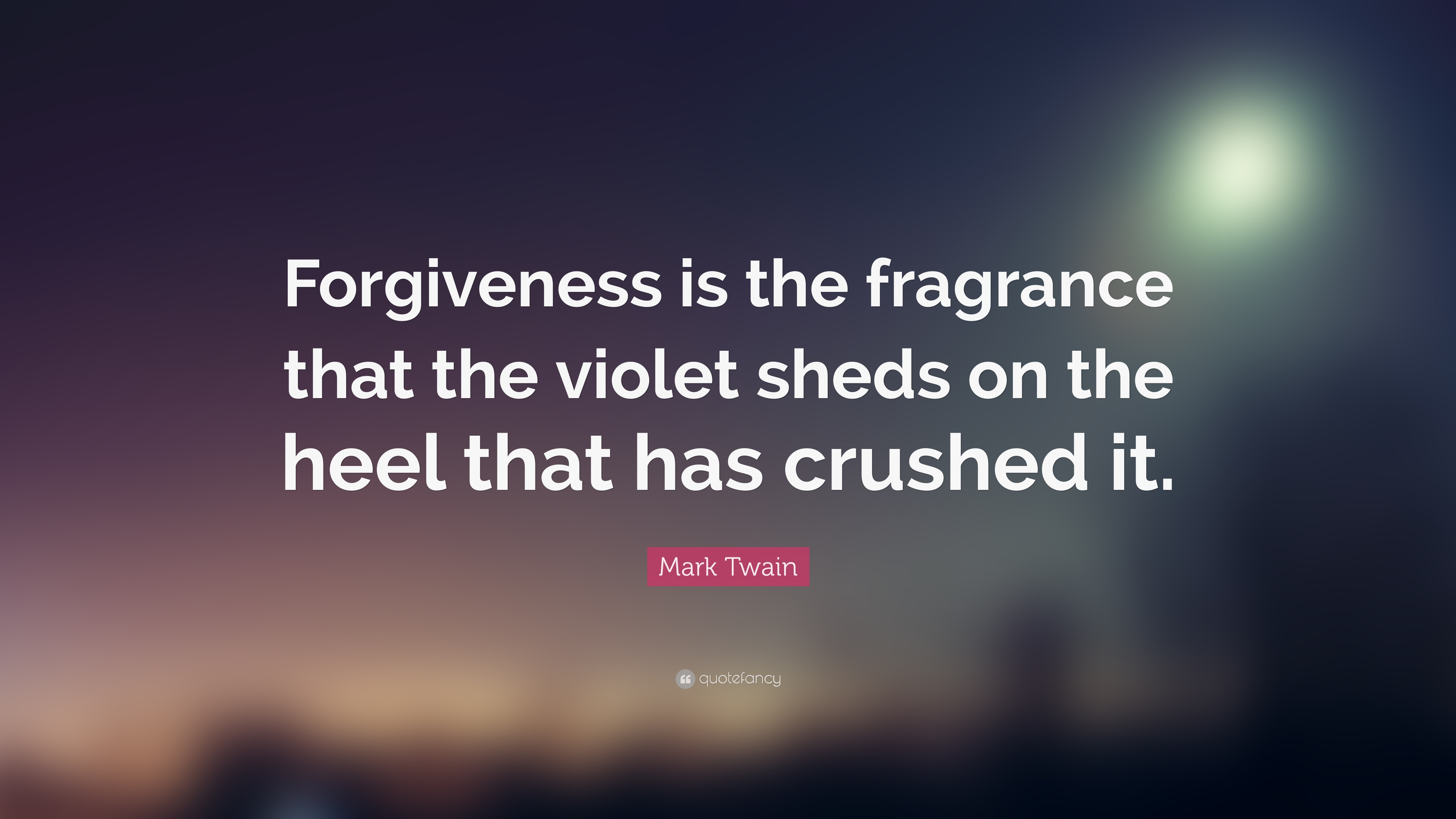 Mark Twain Quote Forgiveness Violet Pinterest thumbnail