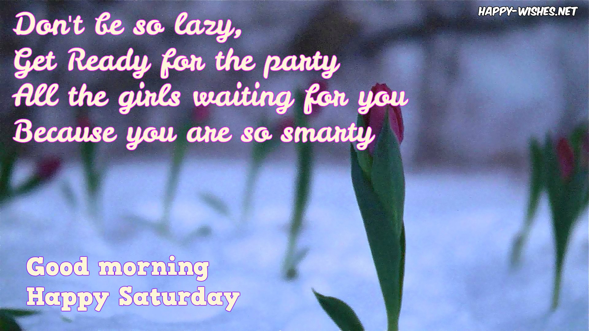 Morning Wishes For Saturday thumbnail