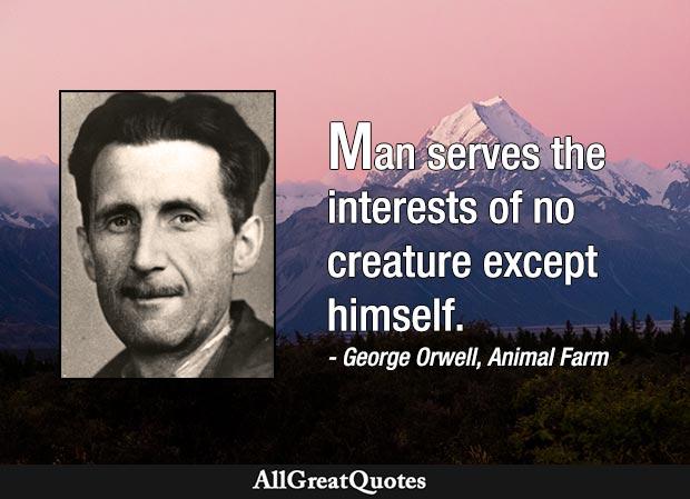 Napoleon Animal Farm Quotes Twitter thumbnail