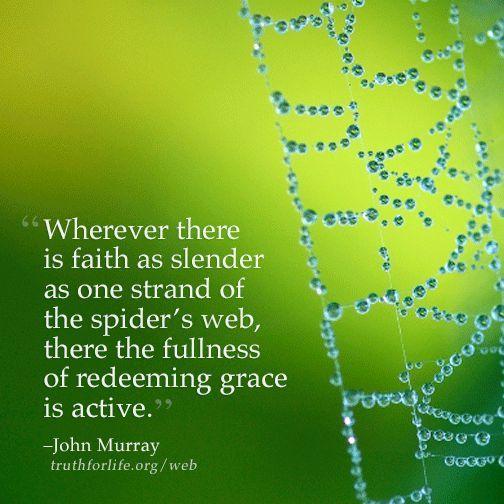 Positive Spider Quotes Pinterest thumbnail