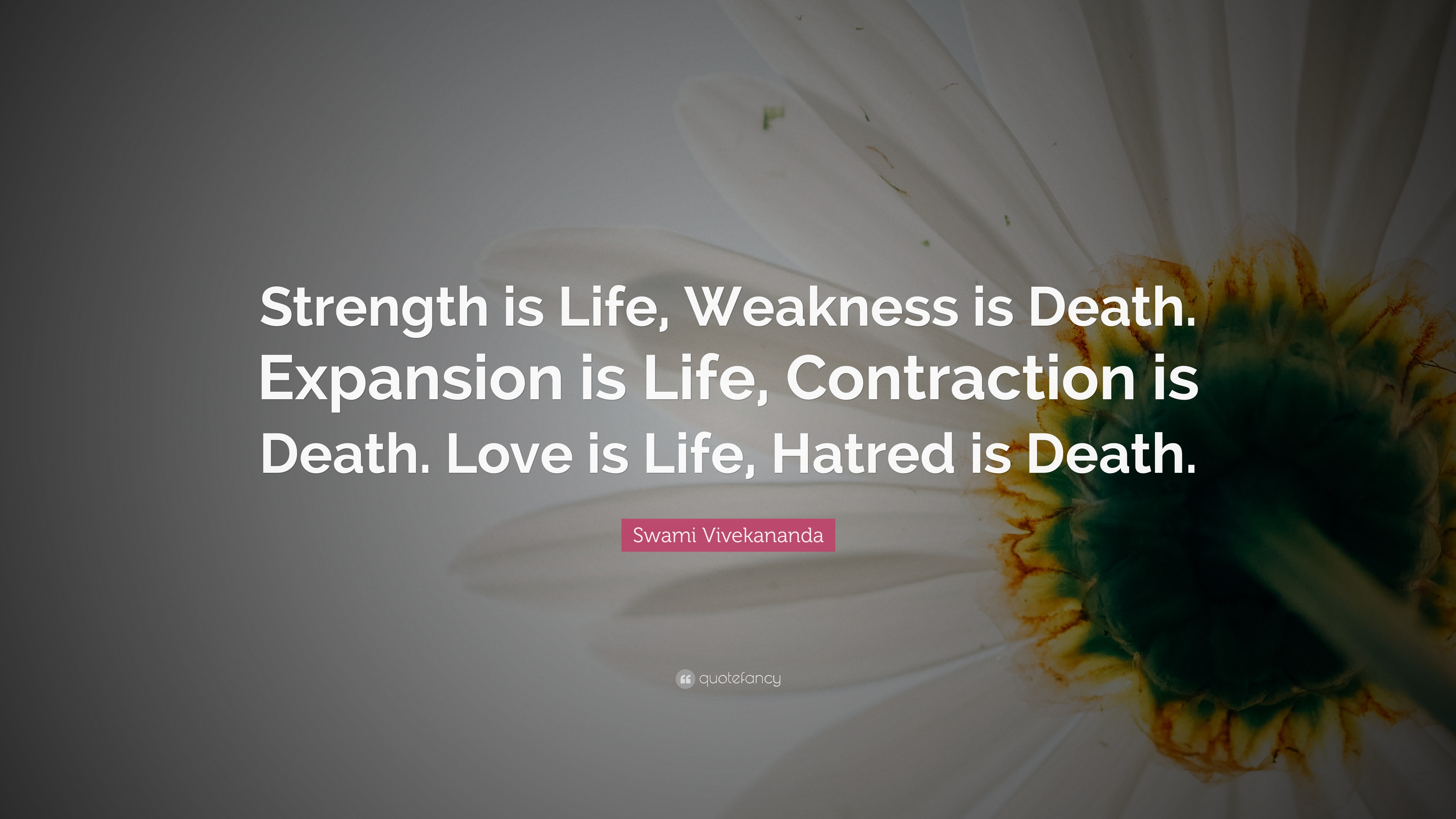 Quote For Strength During Death Pinterest thumbnail