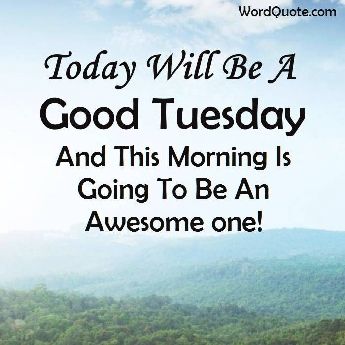 Quotes For Today Tuesday Pinterest thumbnail