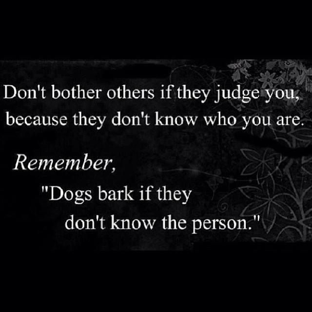 Quotes On Barking Dogs Pinterest thumbnail