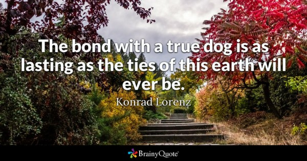 Quotes On Special Bonds Twitter thumbnail