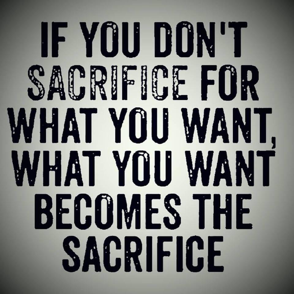 Quotes Sacrifice For Success Pinterest thumbnail