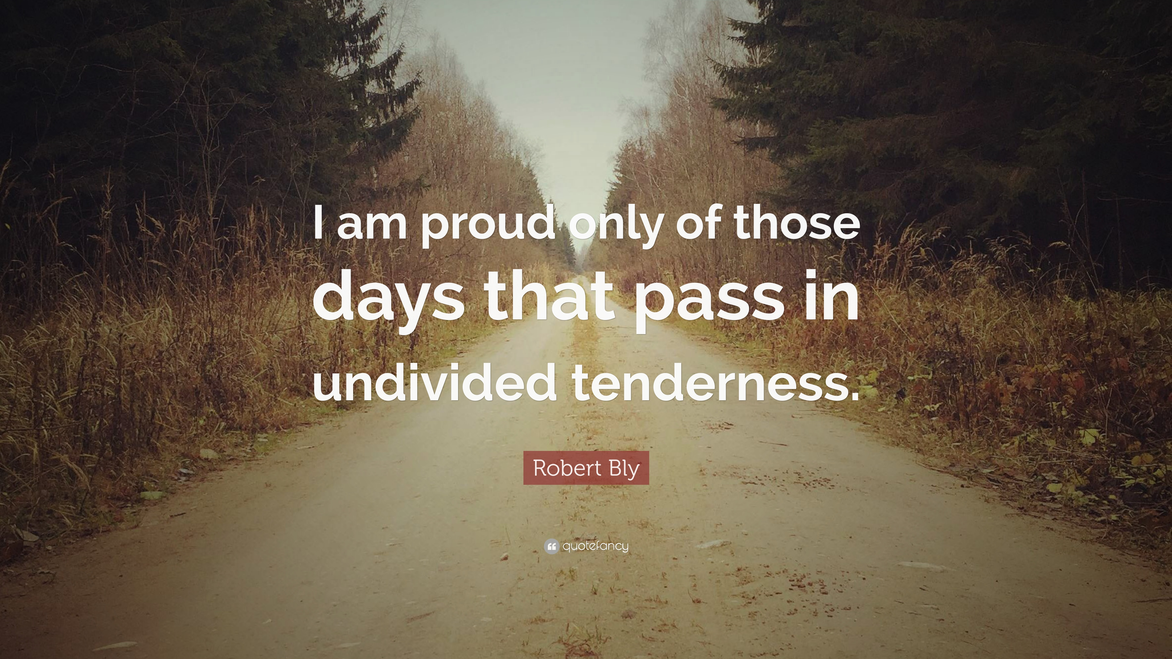 Robert Bly Quotes Pinterest