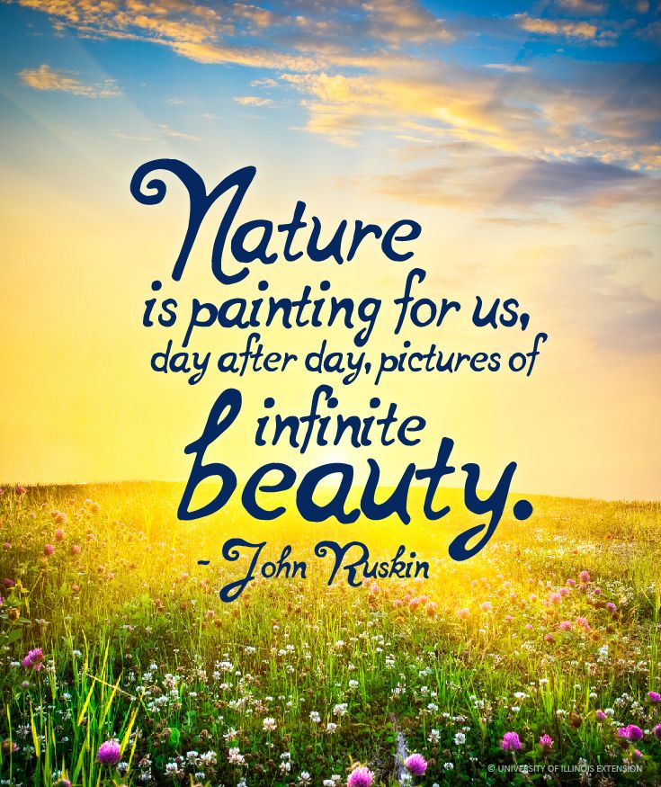 Sayings About Nature Beauty Tumblr thumbnail