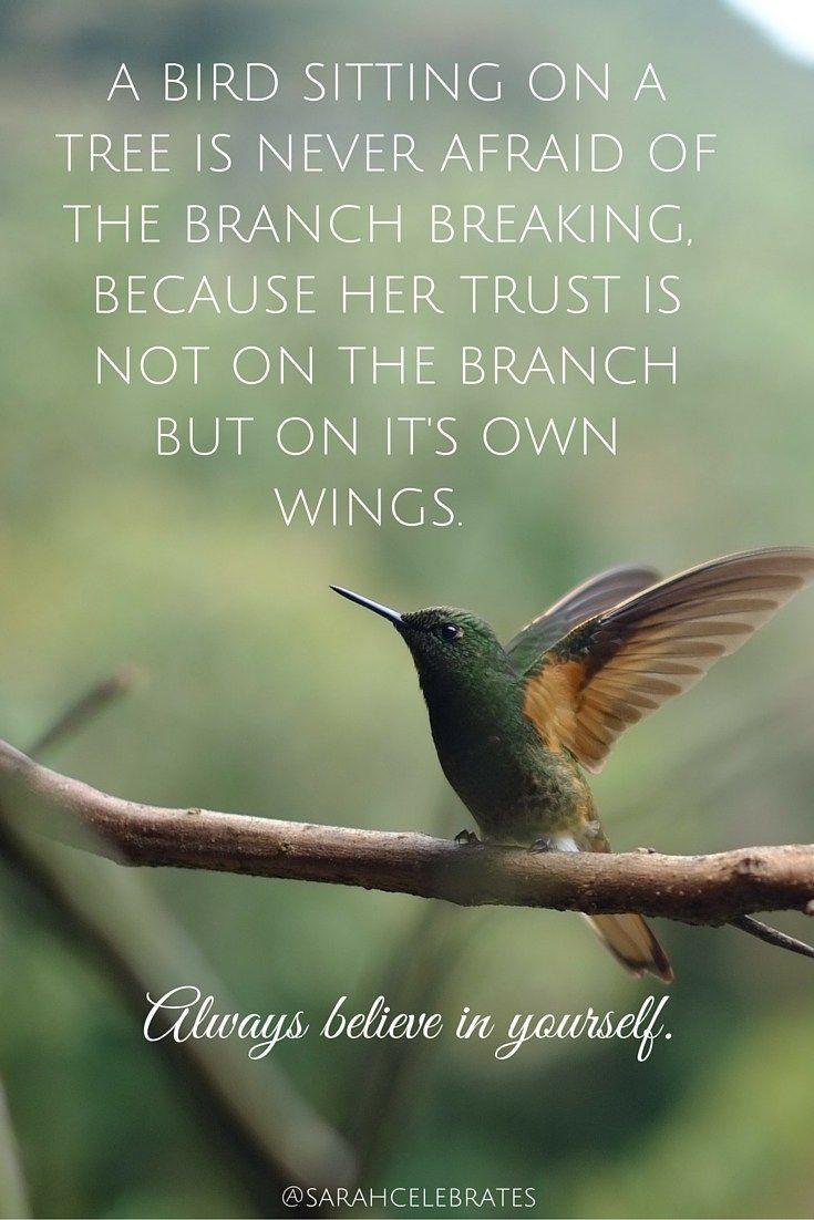 Short Hummingbird Quotes Facebook thumbnail