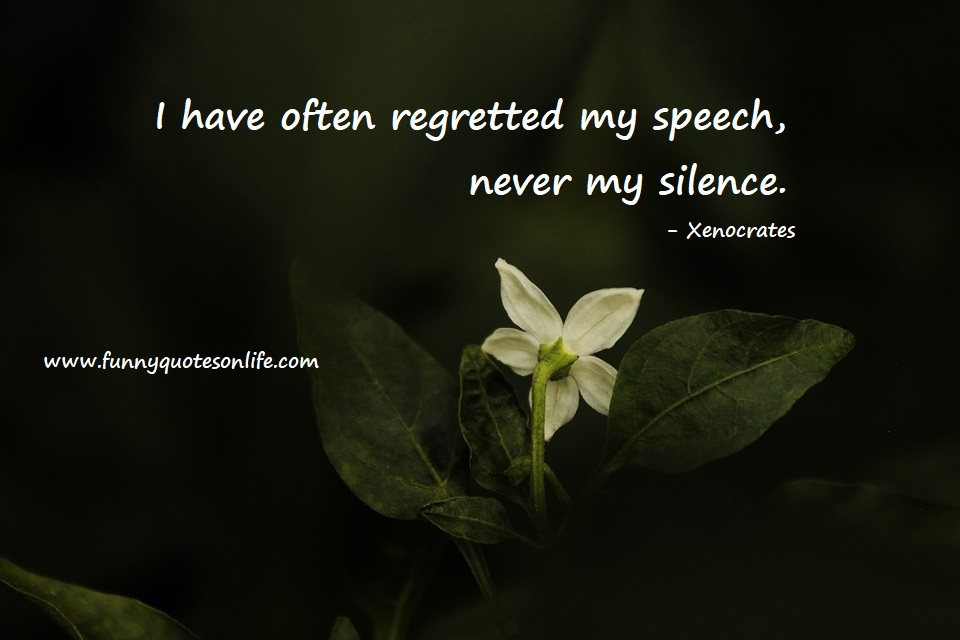 Short Quotes About Silence thumbnail