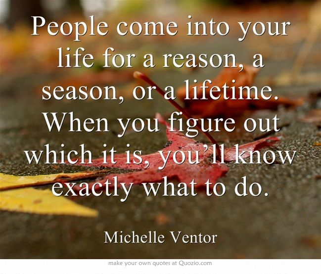Someone Comes Into Your Life For A Reason Quote Pinterest thumbnail