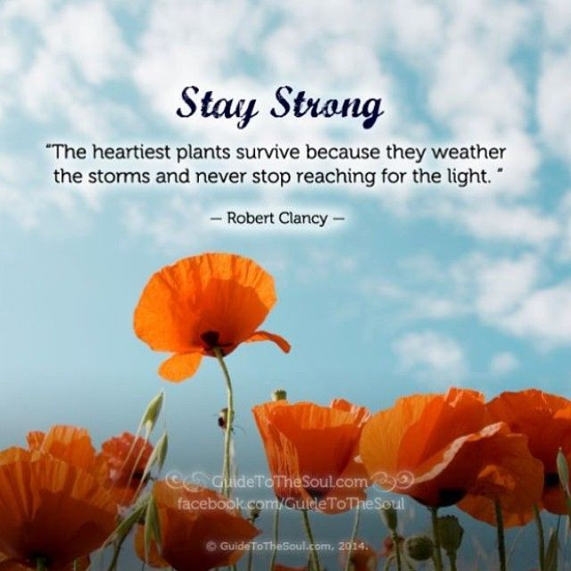 Spiritual Quotes For Healing And Strength Pinterest thumbnail