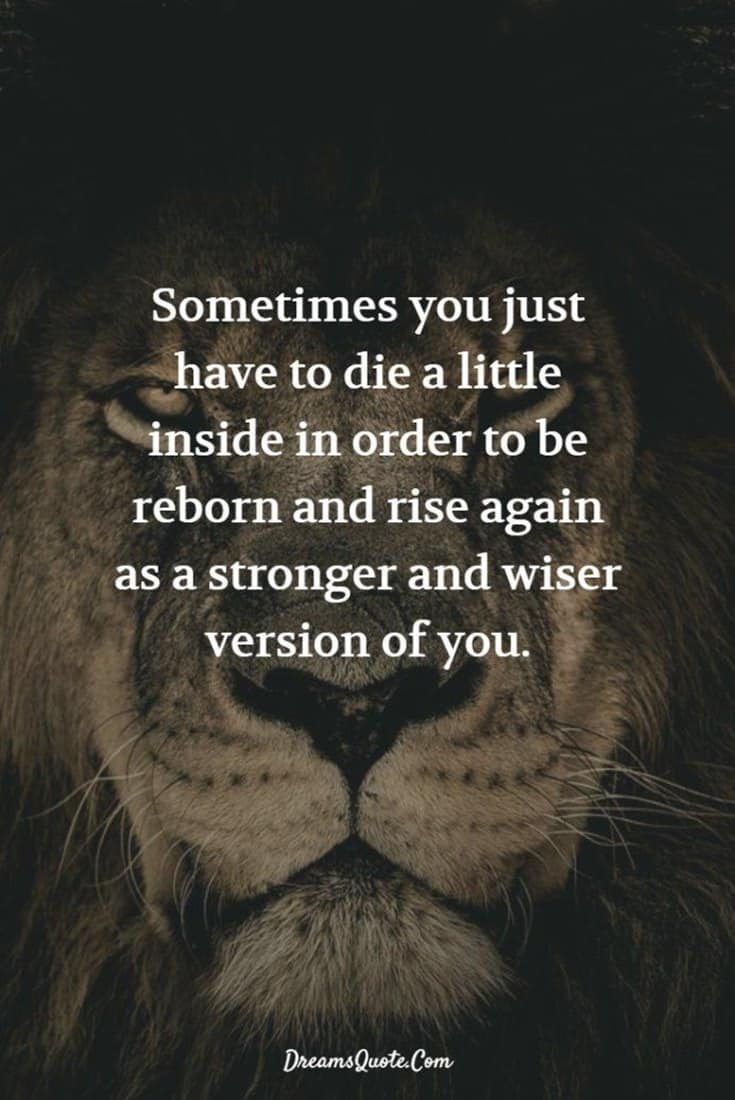 Strength And Perseverance Quotes Tumblr thumbnail