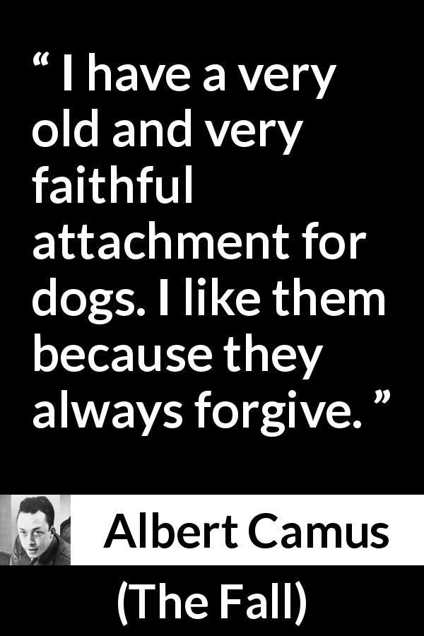 The Fall Camus Quotes Facebook thumbnail
