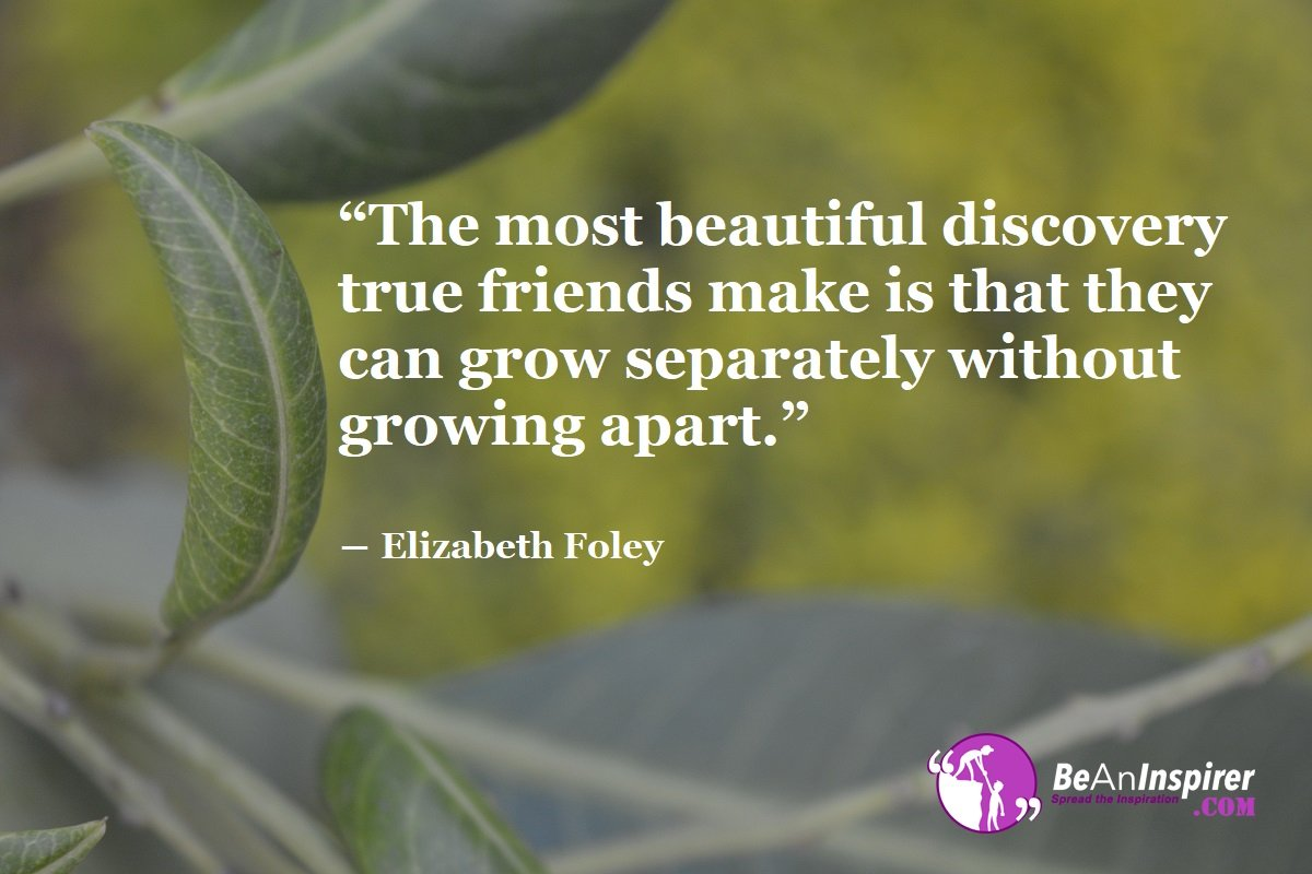 True Friendship Quotes With Images Pinterest thumbnail