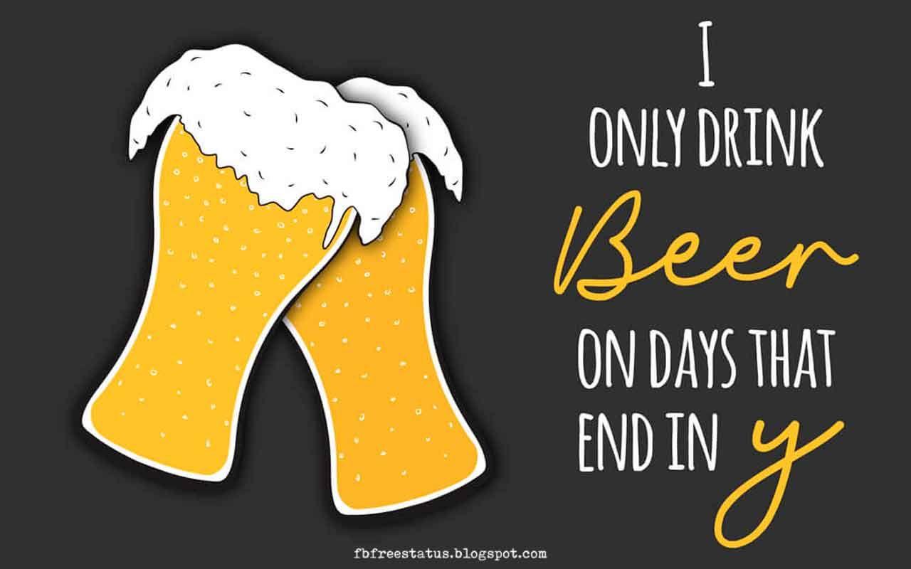 Tuesday Beer Quotes Tumblr thumbnail